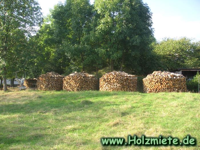 Auf Anhieb gut gestapelt. Holz Miete aus Junglinster in Luxembourg.