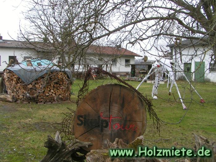 Der Riedochse wacht jetzt Tag und Nacht über unser Brennholz