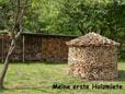 Ein Muss für Hobby Wald-Arbeiter. Der Brennholzführerschein