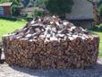 Brennwert von Buchenholz ist besser als Nadelholz