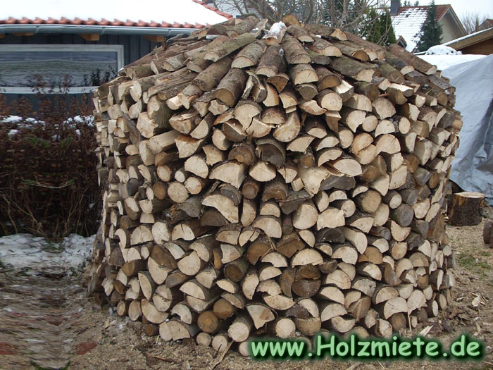 Fichtenholzstämme mit Elektorkettensäge teilen
