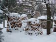 Holz für Forsterheizung komplett bis in den Kern ringförmig gestapelt