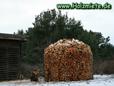 Holz Geschlagen - Gehackt - Gebaut