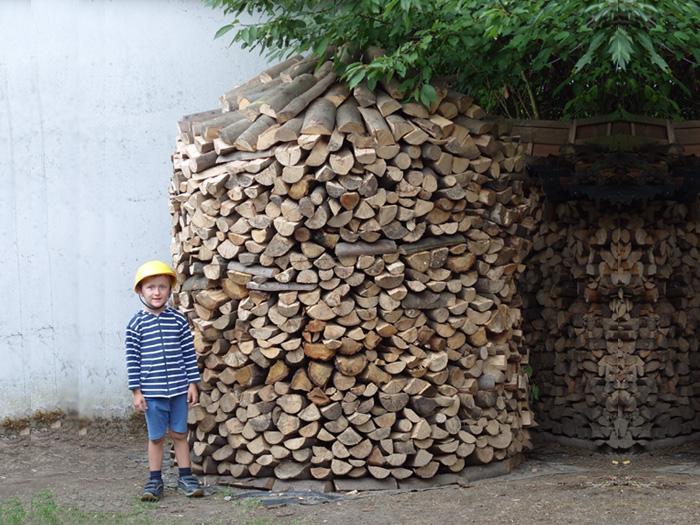 Die Holzart Buche ist Hartholz mit gutem Brennwert