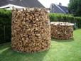 Holzfällung von Tanne, Weide und Kirsche in Unna