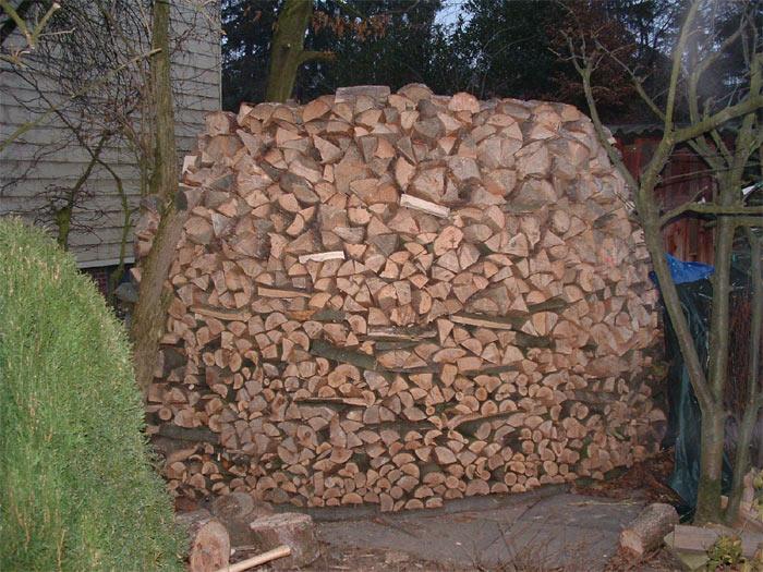 Holz selbst schlagen ist preiswerter als beim Holzhandel