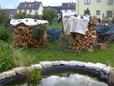 Langstämme Lärche aus Windbruch für Brennholz in handliche Stücke schneiden