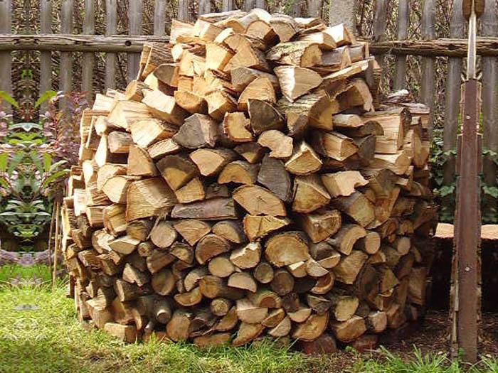 Nutzholzgewinnung für Kessel & Kamin