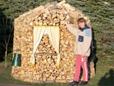 Holzmiete soll im Sommer mit Sonnenblumen dekoriert werden