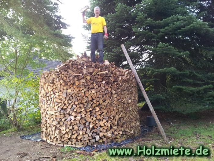 6 große Haufen Spaltholz