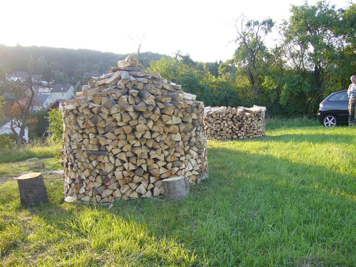 Meterstücke im Wald gleich auf Länge sägen