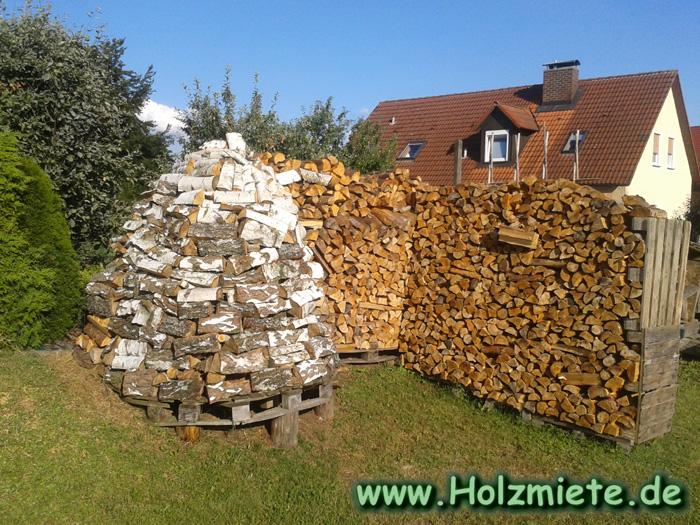 Waldarbeit im Winter