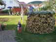 Holzstämme aus einer Waldrandpflege eines Laubmischwaldes