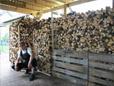 Wilder Haufen Holz schön gestapelt